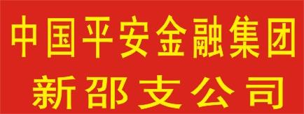 中国平安综合金融集团新邵支公司-邵阳人才网